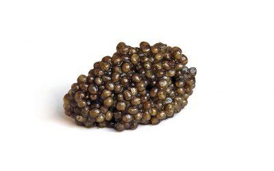 Las 10 mejores recetas con caviar